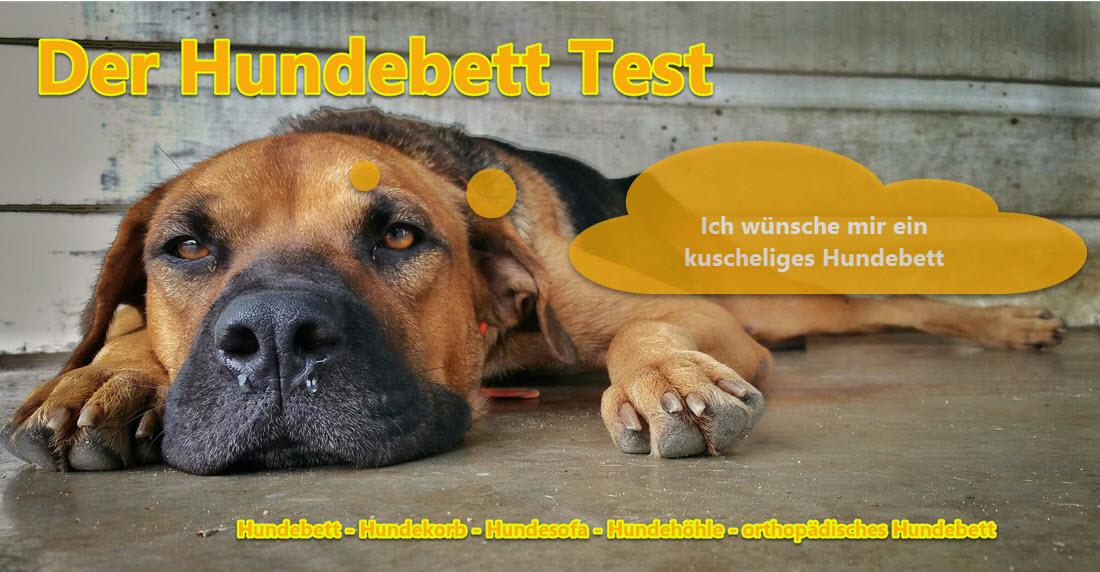 Hundebett++Testsieger++Preisvergleich